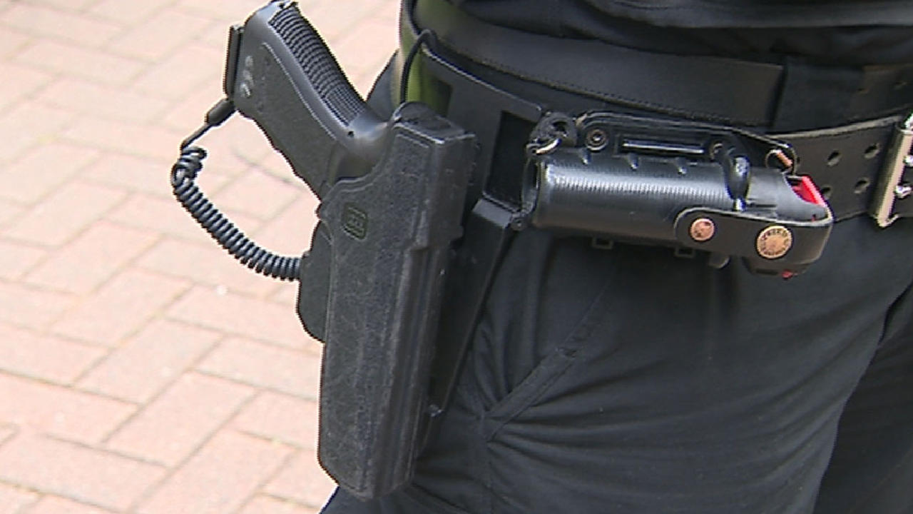 Rural police forces consider giving guns to regular officers