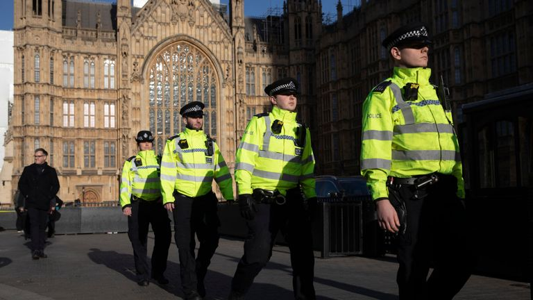 British style of policing 'on its knees and facing extinction' because of cuts